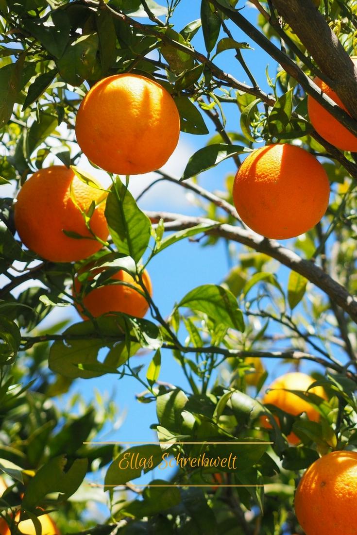 Orangenhain Ellas Schreibwelt