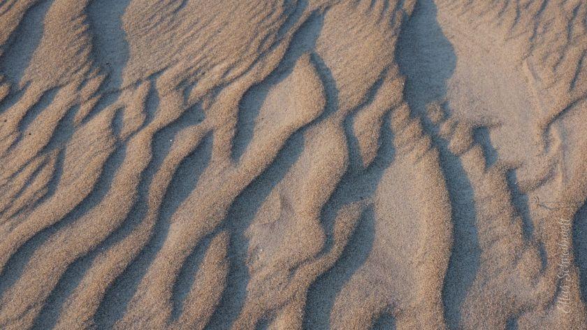 Strand vom Wind geformt