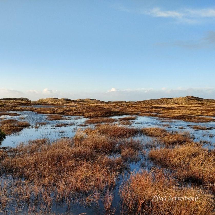 Der Nationalpark Thy nach heftigen Regenfällen