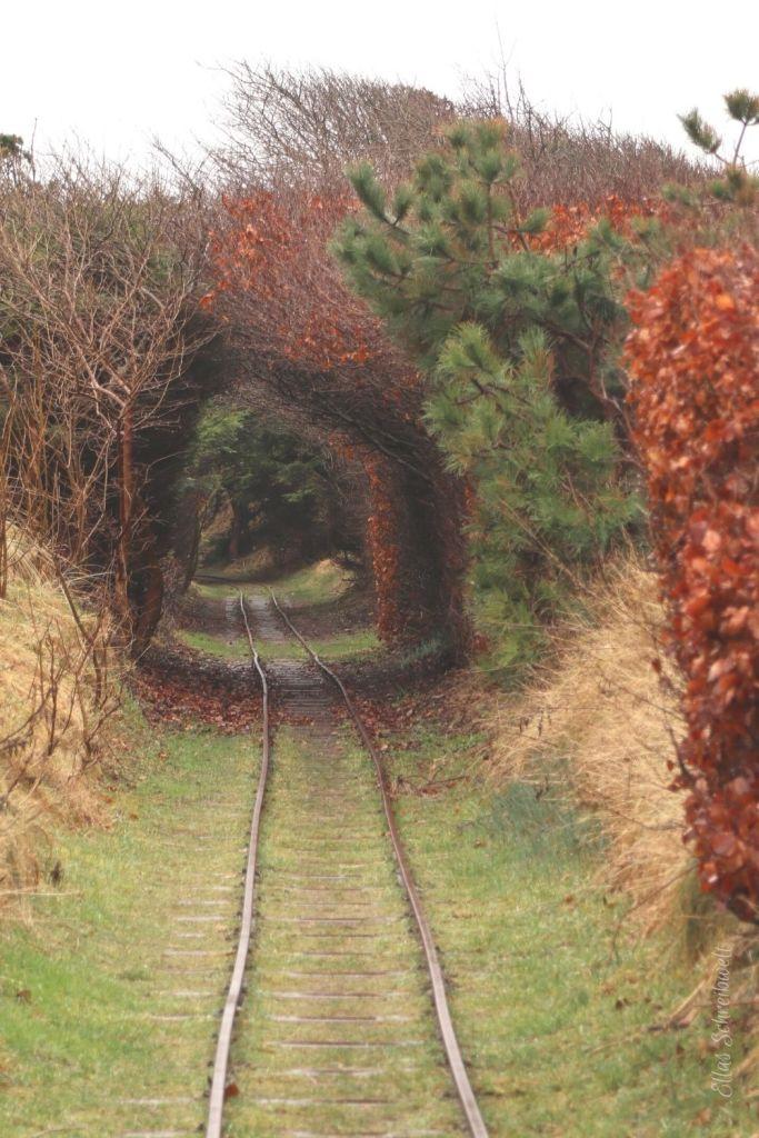 Krumme Gleise der Schmalspurbahn im Freilichtmuseum Hanstholm Dänemark